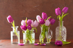 Beautiful purple tulip flowers bouquet in vases Stock Photography