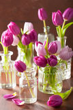 Beautiful purple tulip flowers bouquet in vases Royalty Free Stock Images