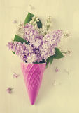 Beautiful purple and white lilac flowers. Royalty Free Stock Photo