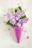 Beautiful purple and white lilac flowers Stock Photo