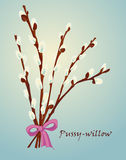 Beautiful pussy willow branches, vintage style Stock Photography