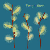 Beautiful pussy willow branches, vintage style Royalty Free Stock Photos