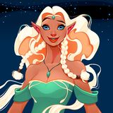 Beautiful queen of elves royalty free illustration