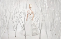 Beautiful queen of winter in the white orchard Royalty Free Stock Image