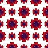Beautiful rad flower. Seamless floral pattern. Vector Royalty Free Stock Photo