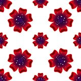 Beautiful rad flower. Seamless floral pattern. Vector Stock Images