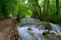 Beautiful raging waterfalls Royalty Free Stock Photography