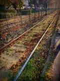 Beautiful rail. Orange leaves and rail Stock Photo