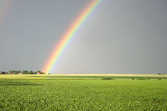 Free Beautiful Rainbow Royalty Free Stock Photo - 20308415