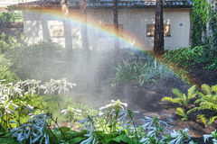 Beautiful rainbow in blooming park. Right half of the rainbow arc over the white colors of the host in a well-kept park on a summer day Stock Photos