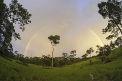 Beautiful rainbow after the rain in National Bio-Diversity Conse Stock Image