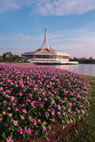 Beautiful Rama9 pubic flower garden park. Bangkok Thailand stock photos