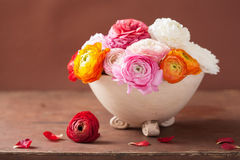 Beautiful ranunculus flowers in vase Stock Photography