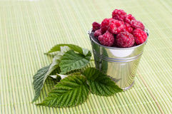 Beautiful raspberries in bucket Royalty Free Stock Photography
