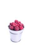 Beautiful raspberries Royalty Free Stock Images