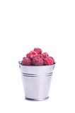 Beautiful raspberries in bucket isolated. On white Stock Images