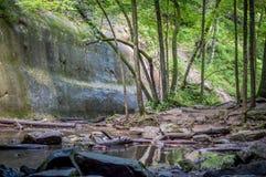 Beautiful ravine Royalty Free Stock Photos