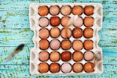 Eggs in the tray on a wooden background. Beautiful raw chicken eggs in a tray on a wooden background Royalty Free Stock Image