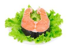Beautiful raw salmon steak. Stock Images