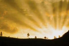 Beautiful rays of light Stock Photography
