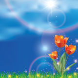 Beautiful realistic spring Stock Images