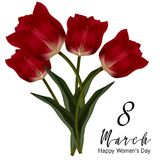 Beautiful realistic tulip bouquet. Vector 8 march illustration Royalty Free Stock Image