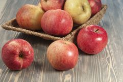 Beautiful red apples Stock Photos