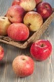 Beautiful red apples Stock Images