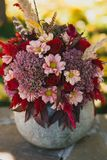 Red autumn bouquet of roses, chrysanthemums and feathers in a vase from pumpkin Stock Image