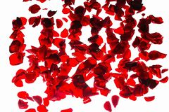 Beautiful red backgrounds. Romantic backgrounds. Red rose petals stock photography