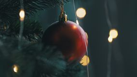 Close up of beautiful red toy are hanging on a christmas tree with light bokeh stock footage