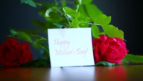 Beautiful red blooming roses. On a black background stock footage