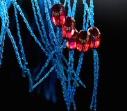 Red objects with design. Beautiful red and blue object photograph with black background royalty free stock photography