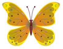 A beautiful red butterfly isolated.  EPS10 Vector Royalty Free Stock Images
