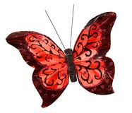 Beautiful red butterfly on white Royalty Free Stock Photos