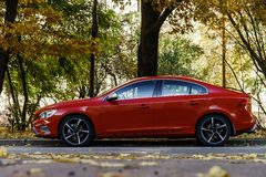 Beautiful red car autumn view Royalty Free Stock Photo