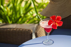 Beautiful red cocktail Royalty Free Stock Image