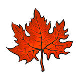 Beautiful red colored autumn maple leave isolated on white background. Beautiful red colored autumn maple leave, vector illustration isolated on white background Royalty Free Stock Photography