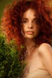 Beautiful red curly hair girl Royalty Free Stock Photos