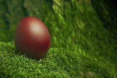 Beautiful red Easter egg Royalty Free Stock Photography