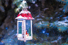 Beautiful red fairytale lantern hanging on snowy fir branch in forest Stock Photo