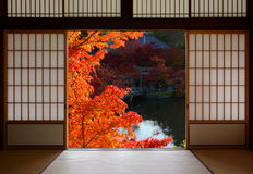 Beautiful red fall maple leaves framed by traditional Japanese room doorway. Traditional Japanese tatami room interior with beautiful autumn colors seen through Stock Photo