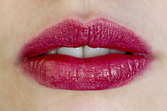 Beautiful red female lips Stock Photos