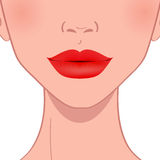 Beautiful red female lips. Lip makeup Stock Photo