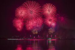 Beautiful Red Fireworks in The Sky Royalty Free Stock Images