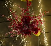 A beautiful red flower arrangement hanging from the roof. With amazing yellow lighting royalty free stock images