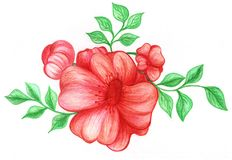 Beautiful red flower hand drawn Stock Images