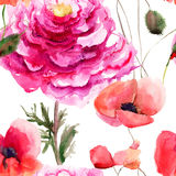 Beautiful Red flower. Watercolor painting, seamless pattern Stock Photos