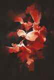 Beautiful red flowers in dark background. With oil painting style Stock Images