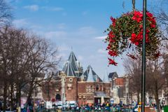 Beautiful red flowers embellish the bridges at the Old Central district in Amsterdam. On the first days of spring beautiful red flowers embellish the bridges at royalty free stock image